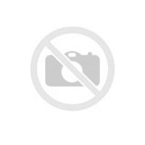 Trimmera aukla  2,03mm x 12m Silentwist, Echo